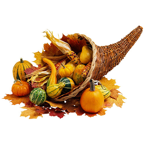 Autumn answer: CORNUCOPIA