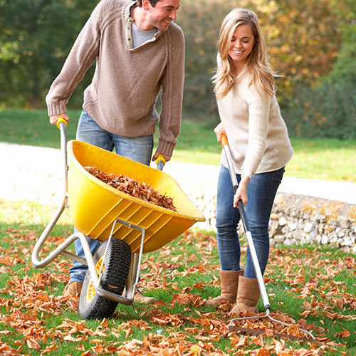 Autumn answer: RAKING LEAVES