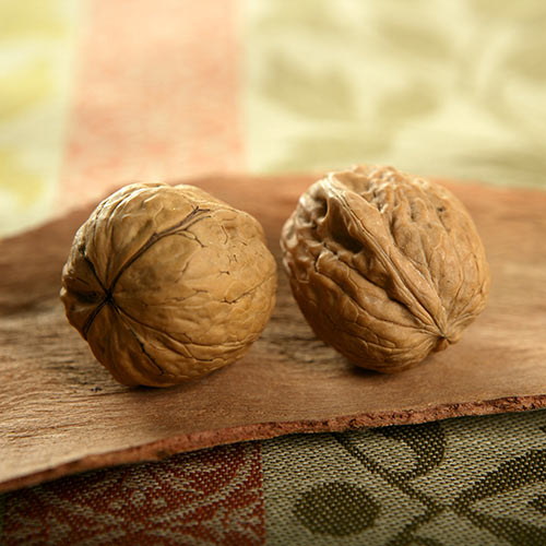 Autumn answer: WALNUTS