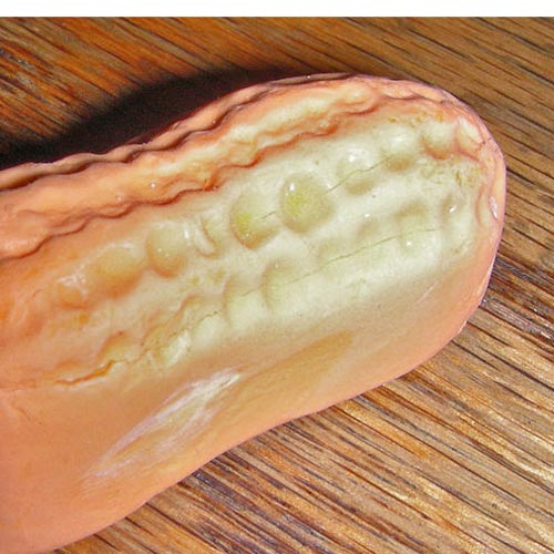 Candy answer: CIRCUS PEANUT