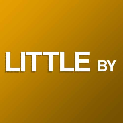 Catchphrases answer: LITTLE BY LITTLE