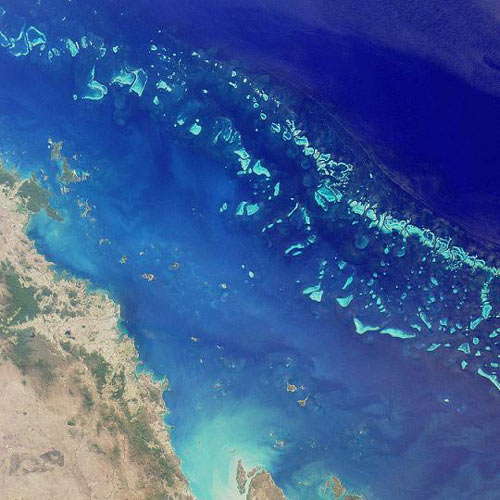 Earth from Above answer: BARRIER REEF