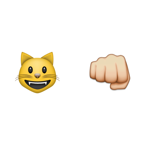 Emoji Quiz 3 answer: CATFIGHT