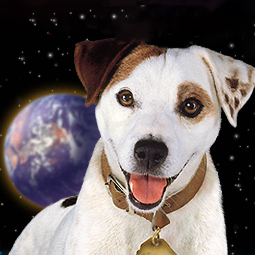 I ♥ 1990s answer: WISHBONE