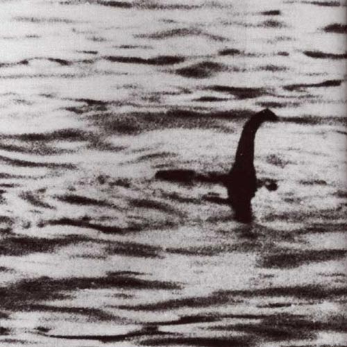 N is for... answer: NESSIE
