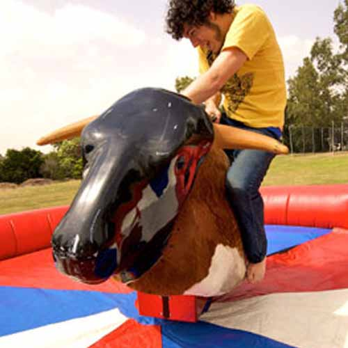 Party answer: MECHANICAL BULL