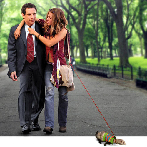 Rom-Coms answer: ALONG CAME POLLY
