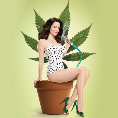 TV Shows answer: WEEDS