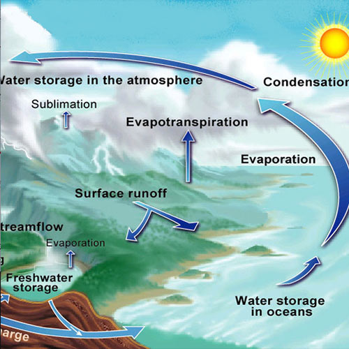 Wissenschaft answer: WATER CYCLE