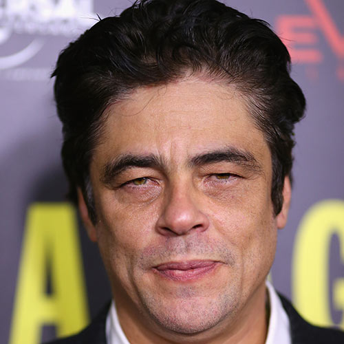 Actors answer: BENICIO DEL TORO