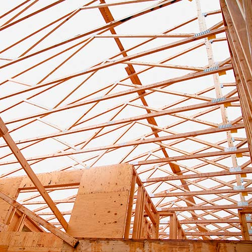 Architecture answer: TRUSSES