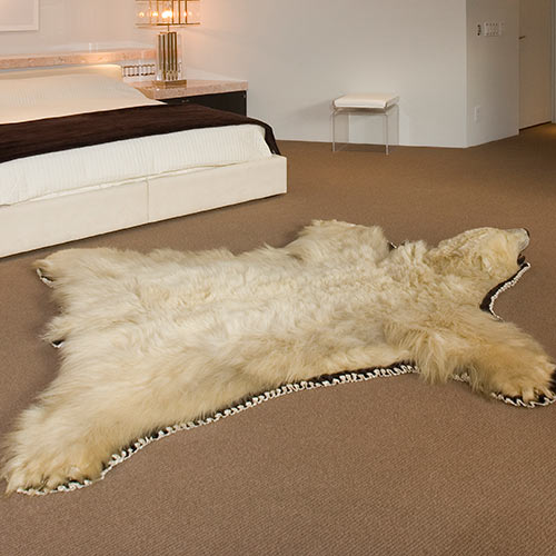 Around the House answer: BEAR RUG