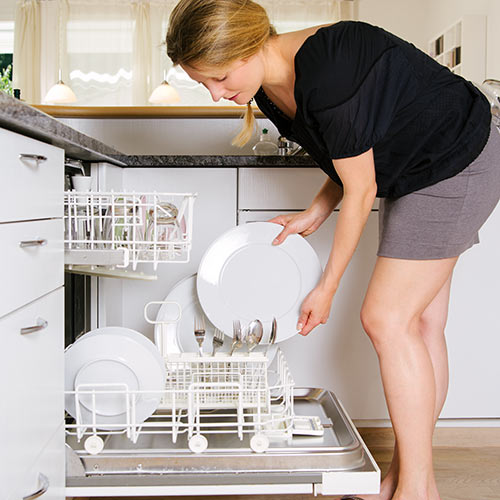 Around the House answer: DISHWASHER