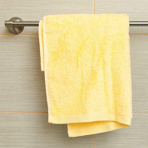 Around the House answer: TOWEL RACK