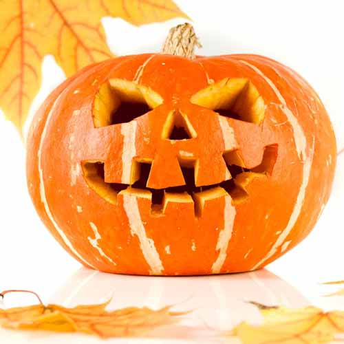 Autumn answer: JACK-O-LANTERN