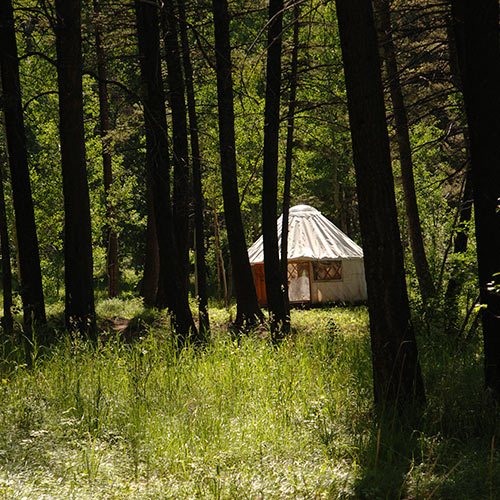 Autumn answer: YURT