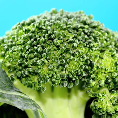 B is for... answer: BROCCOLI