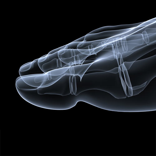Body Parts answer: TOE BONE