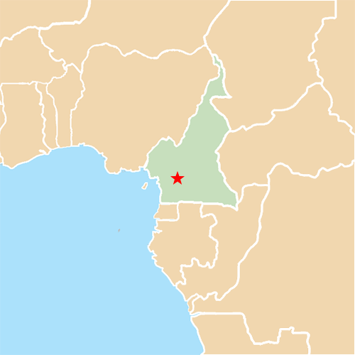 Capital Cities answer: YAOUNDE