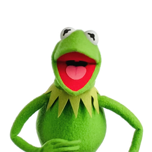 Cartoons 2 answer: KERMIT