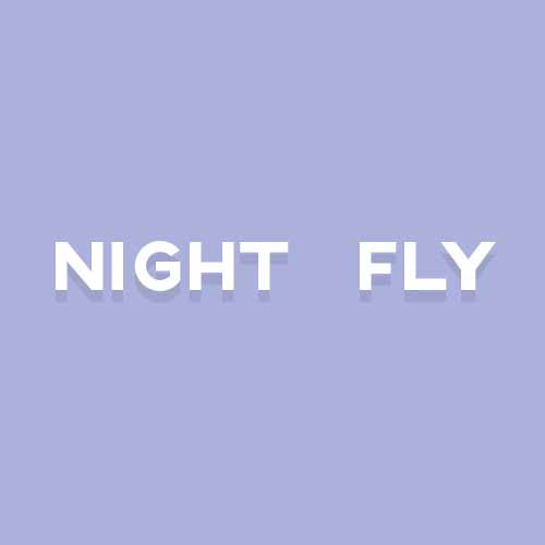 Catchphrases 3 answer: FLY BY NIGHT