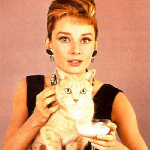 Cat Lovers answer: AUDREY HEPBURN