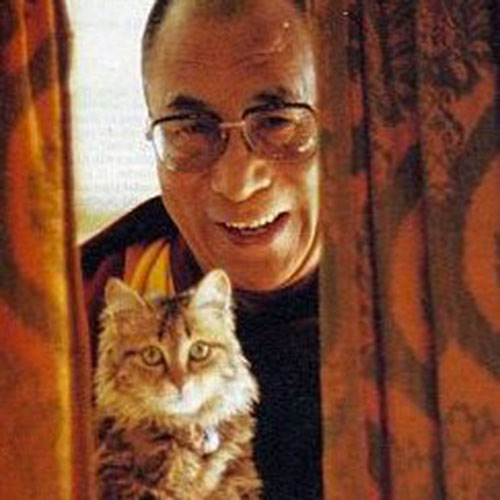 Cat Lovers answer: DALAI LAMA