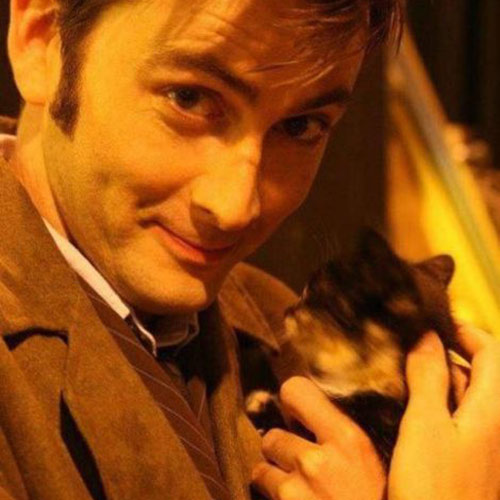 Cat Lovers answer: DAVID TENNANT
