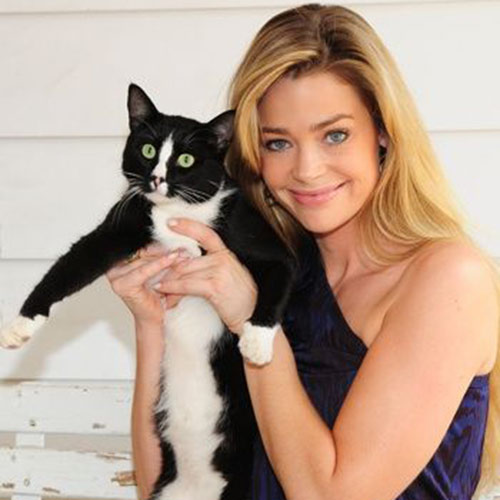 Cat Lovers answer: DENISE RICHARDS