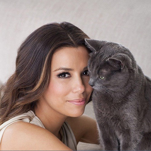 Cat Lovers answer: EVA LONGORIA