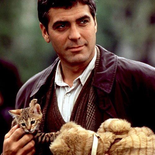 Cat Lovers answer: GEORGE CLOONEY