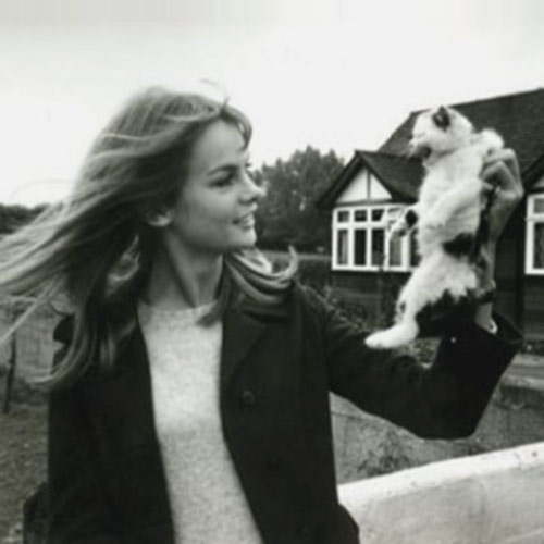Cat Lovers answer: JEAN SHRIMPTON