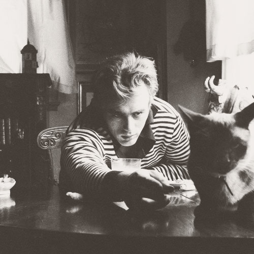 Cat Lovers answer: JAMES DEAN