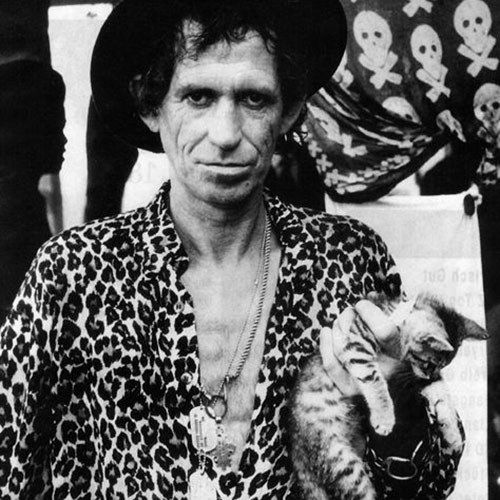 Cat Lovers answer: KEITH RICHARDS