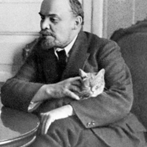 Cat Lovers answer: LENIN