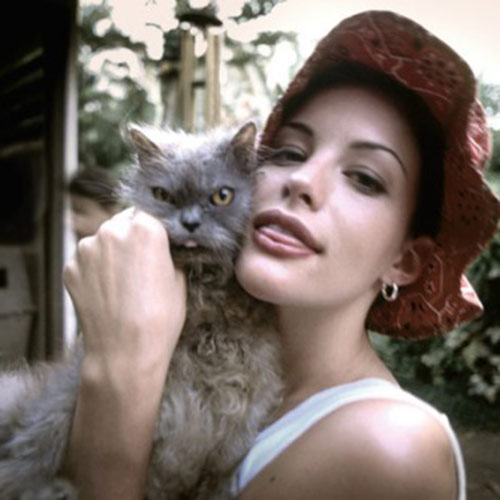 Cat Lovers answer: LIV TYLER