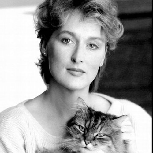 Cat Lovers answer: MERYL STREEP