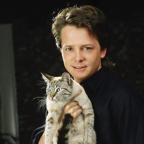 Cat Lovers answer: MICHAEL J FOX