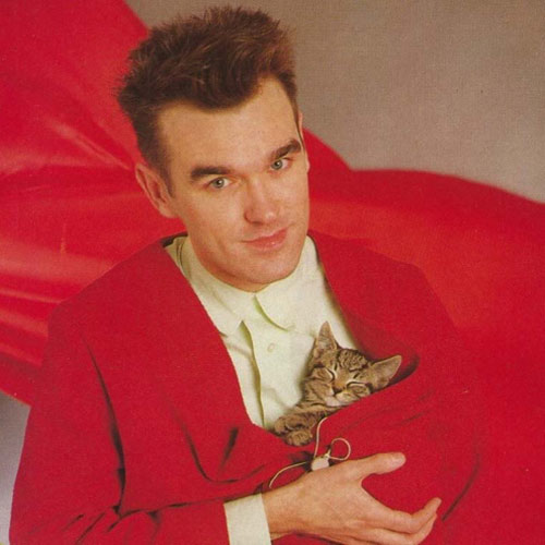 Cat Lovers answer: MORRISSEY
