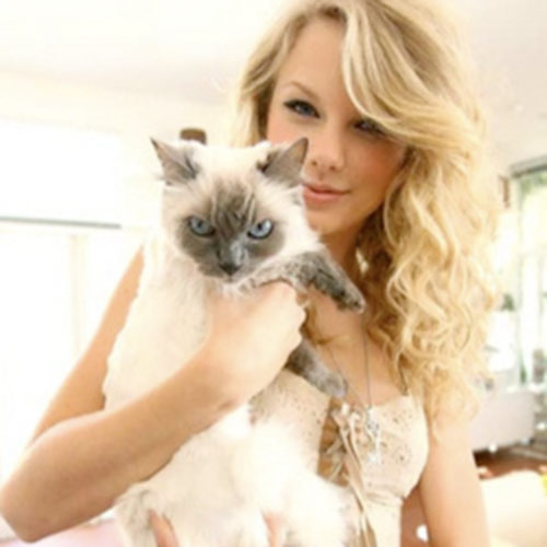 Cat Lovers answer: TAYLOR SWIFT