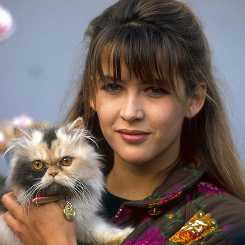 Cat Lovers answer: SOPHIE MARCEAU