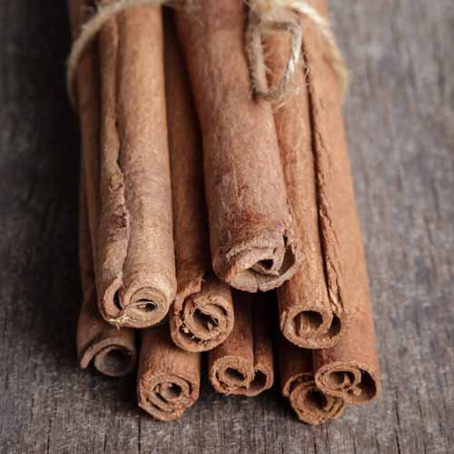 Christmas answer: CINNAMON