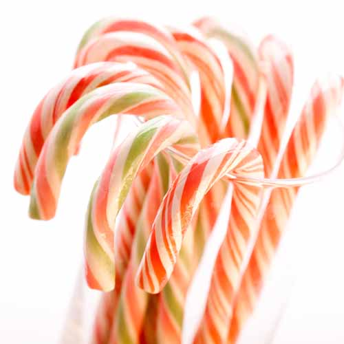 Christmas answer: CANDY CANE