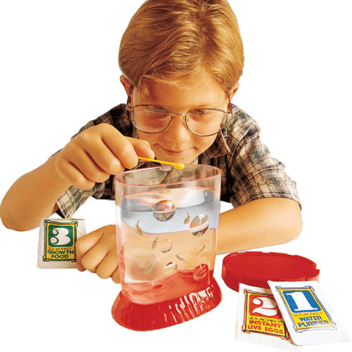 Classic Toys answer: SEA MONKEYS
