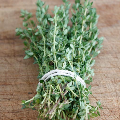 Cooking answer: THYME
