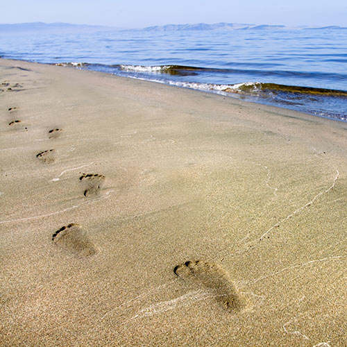 Desert Island answer: FOOTPRINTS