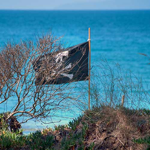 Desert Island answer: PIRATES