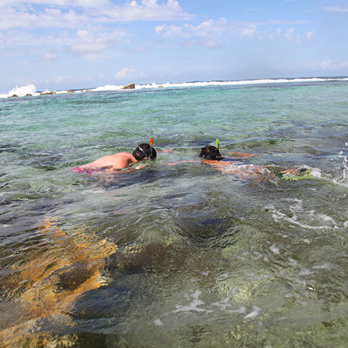 Desert Island answer: SNORKELLING