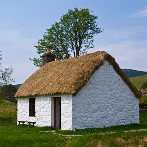 Dwellings answer: COTTAGE