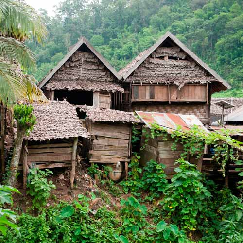 Dwellings answer: STILT HOUSE
